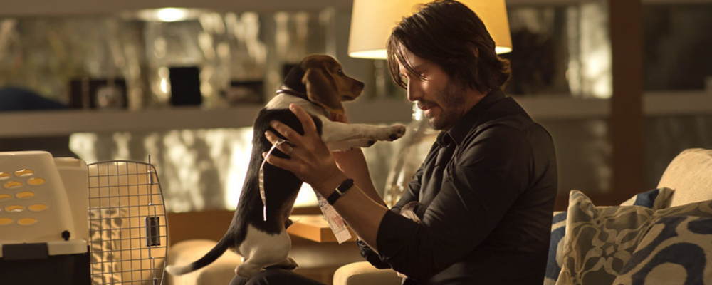 John wich and his dog