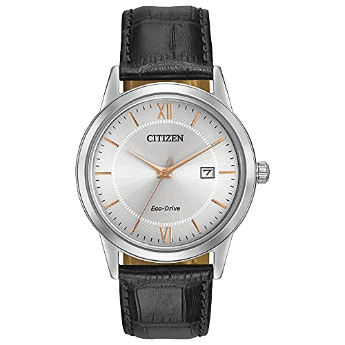 Citizen Eco-Drive Stainless Steel Watch with Date
